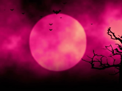 Animated Stylish Background Useful For Halloween,spooky