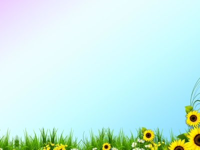 Beautiful Spring Template Background