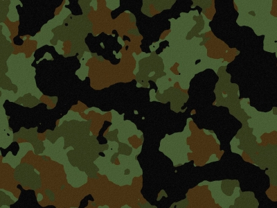 Camouflage Desktop Wallpapers