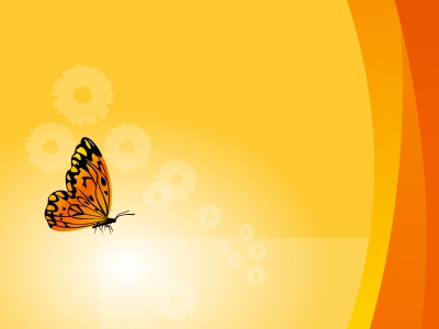 Floral Background With Butterfly Backgrounds   Black