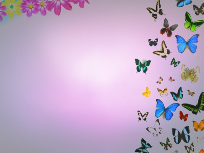 Free Butterflies And Flowers Backgrounds For Powerpoint