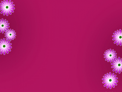 Purple Pink Floral Wallpaper