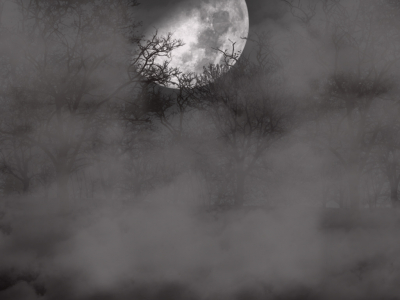 Spooky Background Picture