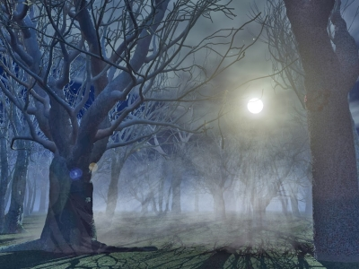 Spooky Forest Hd Wallpapers  Hindi Motivational Quotes