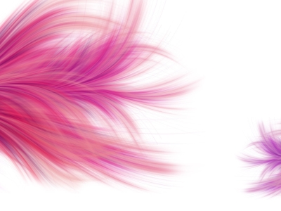 abstract pink feather background #15629