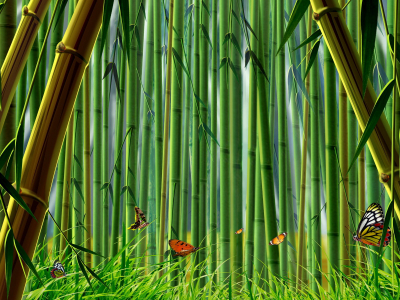 Bamboo High-quality Background