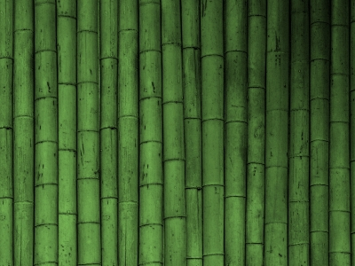 Bamboo PC Desktop Background