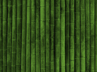 Bamboo Textures Background