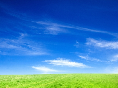 Blue Sky And Green Grass Wallpaper Hd