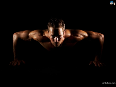 Bodybuilding HD Download Photo #724