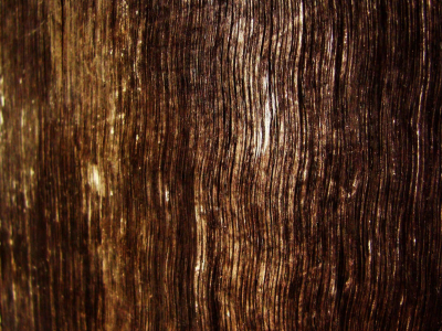 Bright Wood Grain Wallpapers Hd
