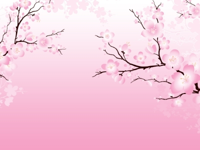 background free Cherry Blossom #2670