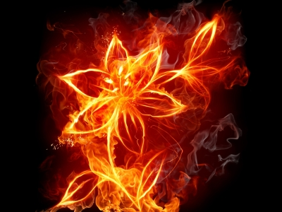 Floral Fire Background