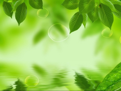 Green, Leaf, Leaves, Background, Textures, Wallpaper