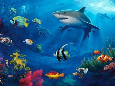 Hd Underwater Colorful Life Background