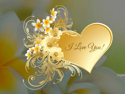 I Love You Live Hd Wallpaper