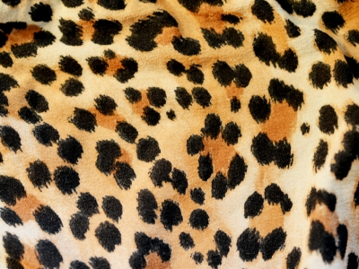 leopard print art wallpaper for android