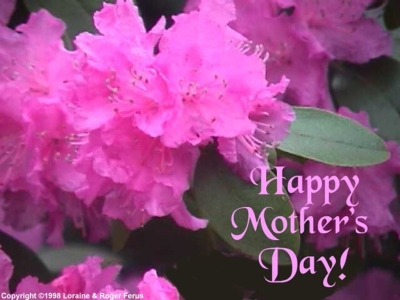 Mother Day Background Picture