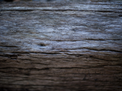 Night Old Wood Texture Background