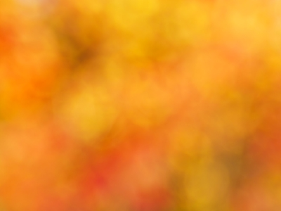 background orange high-quality #568