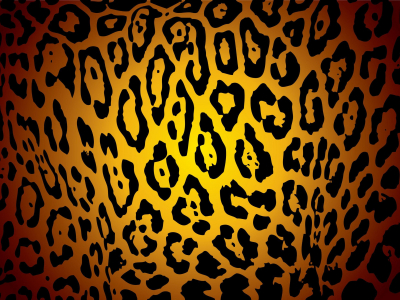 pictures of cheetah print background pictures