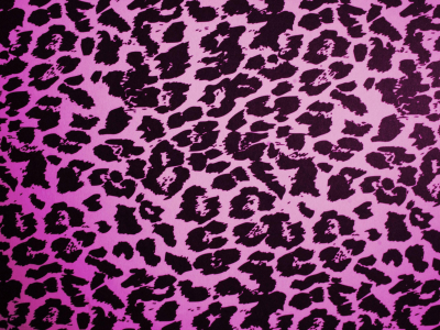 purple animal print desktop background
