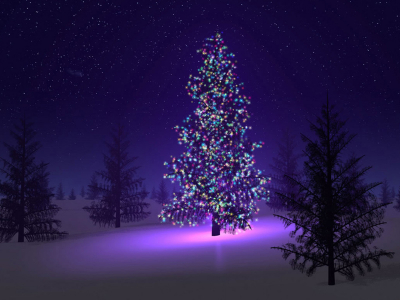 Purple Christmas Trees Wallpaper