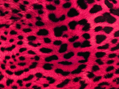 red animal print desktop background