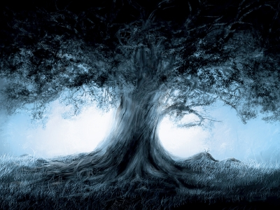 Trees Magic Wallpaper