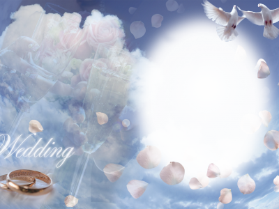 Wedding Pigeon Frame Background
