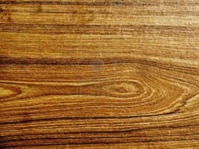 Wood Grain Real Background