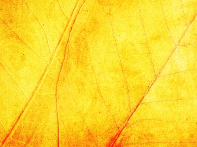 yellow texture powerpoint #950