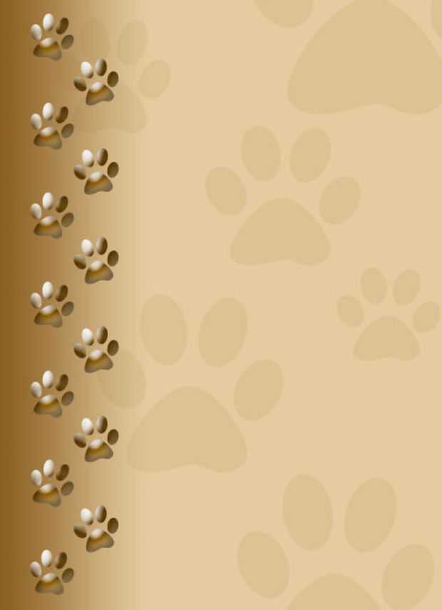 Paw Print Background - PowerPoint