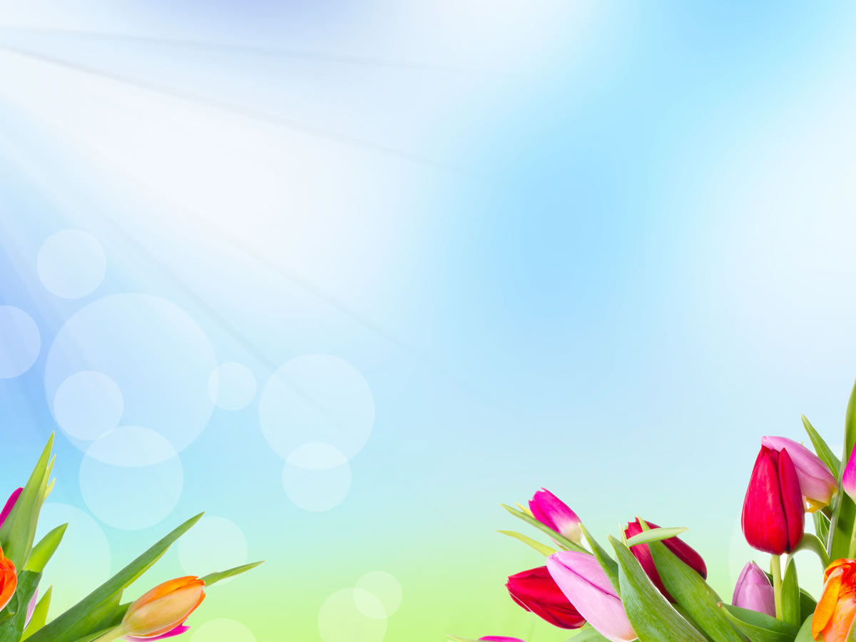 Ppt Flower Background Powerpoint Backgrounds For Free
