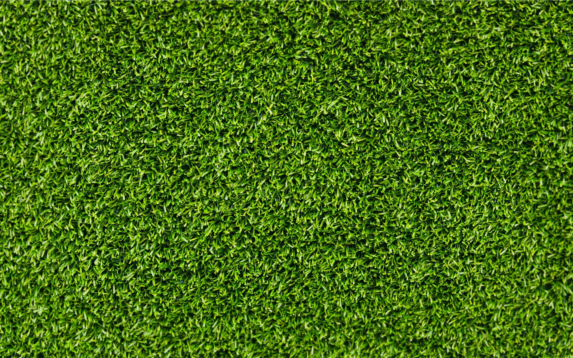 Grass Background Powerpoint Backgrounds For Free Powerpoint Templates