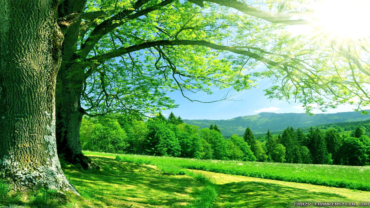 Background Images Nature - PowerPoint Backgrounds for Free