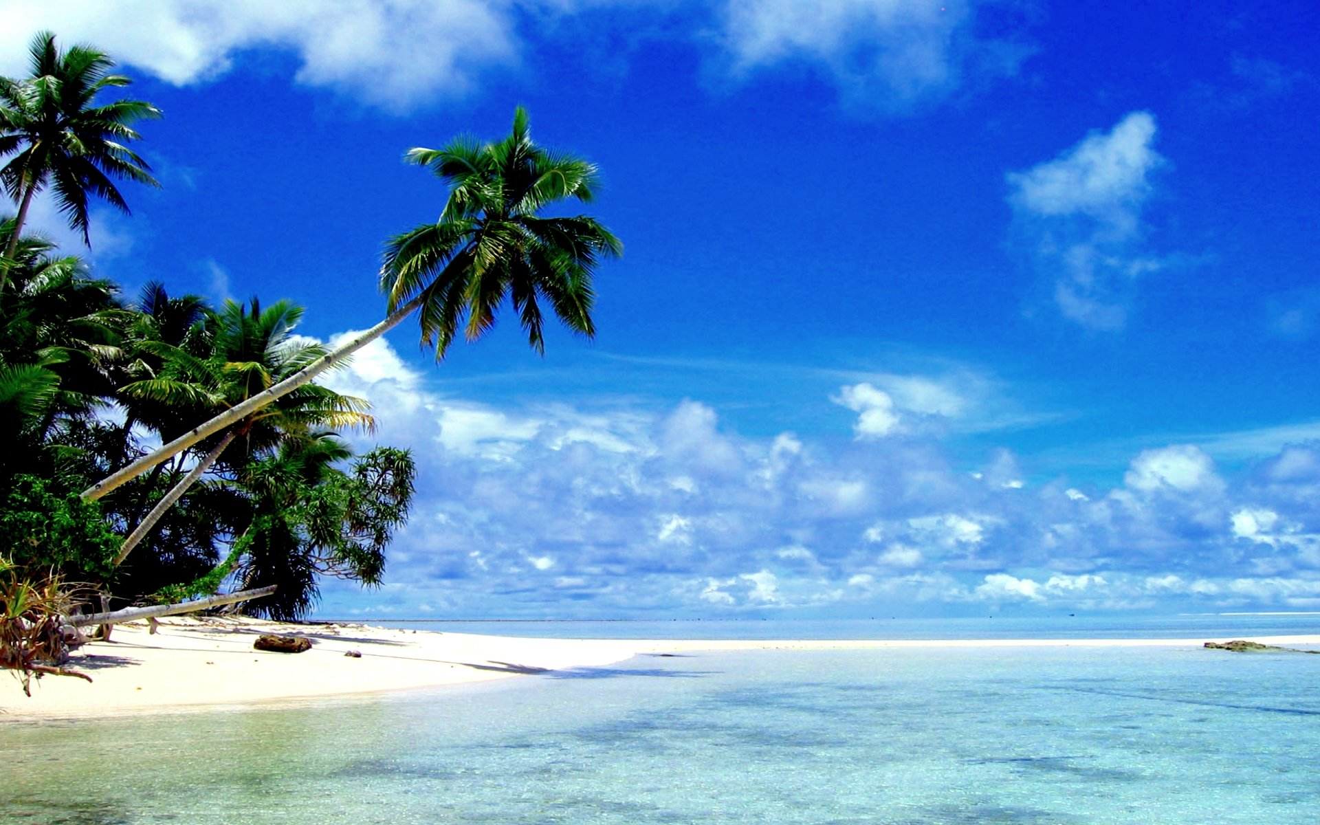 Tropical Paradise Background Tropical Paradise Wallpaper