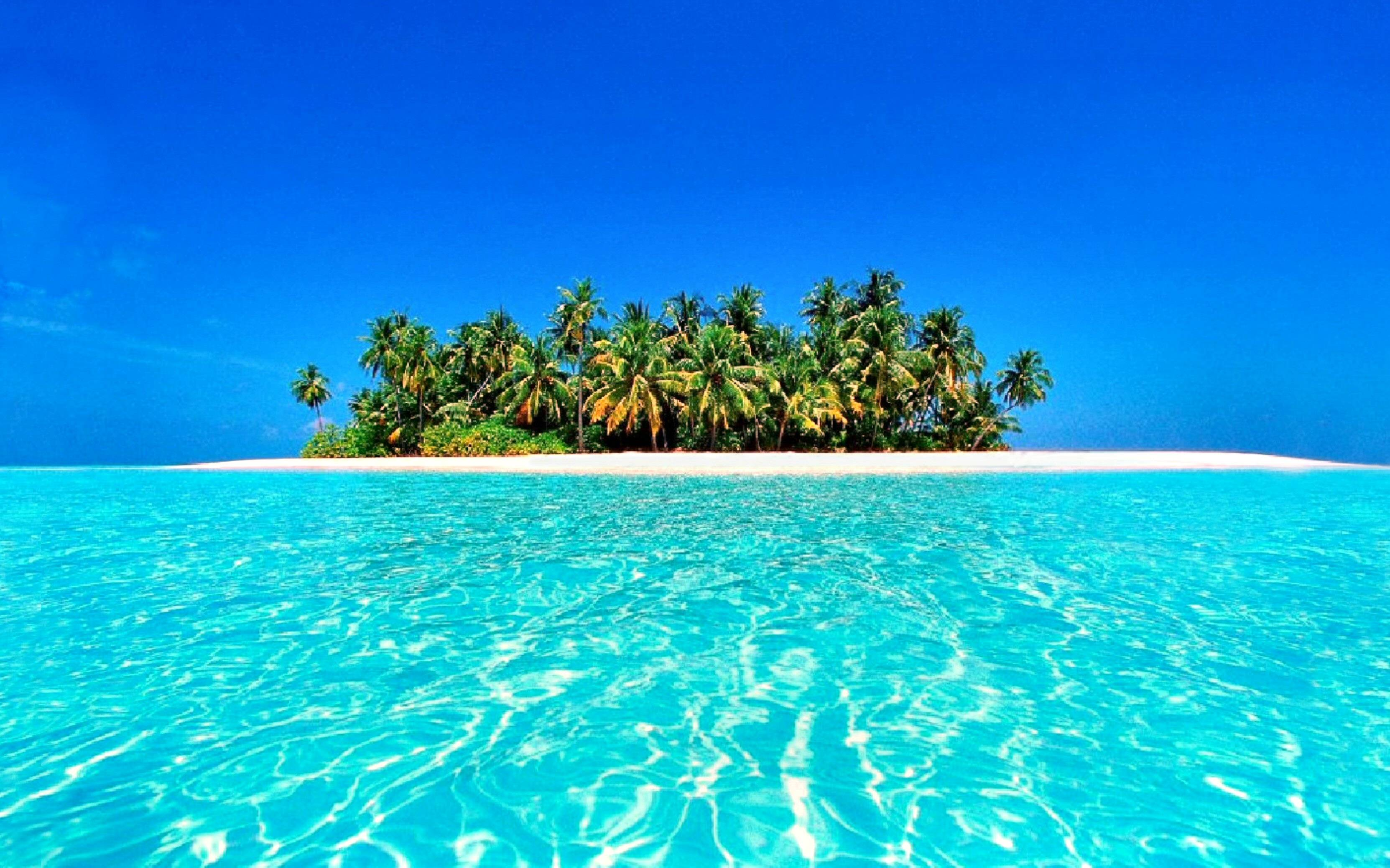 Wallpapers For > Colorful Tropical Wallpapers