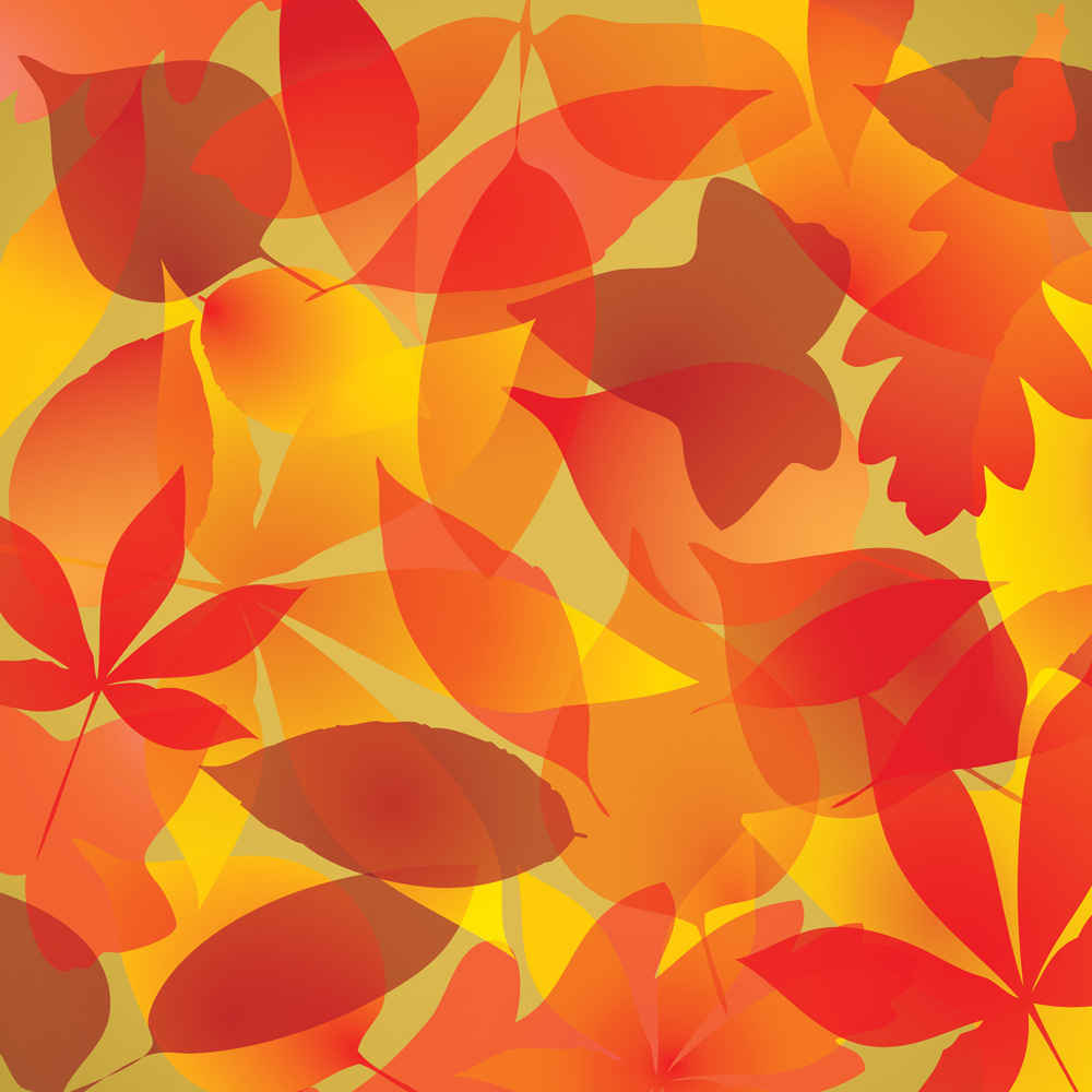 Fall Leaves Background - Download Free Fall Leaves Backgrounds and