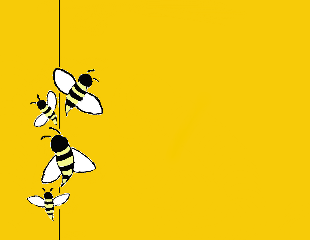 Bee Cartoon Wallpapers  WallpapersIn4k