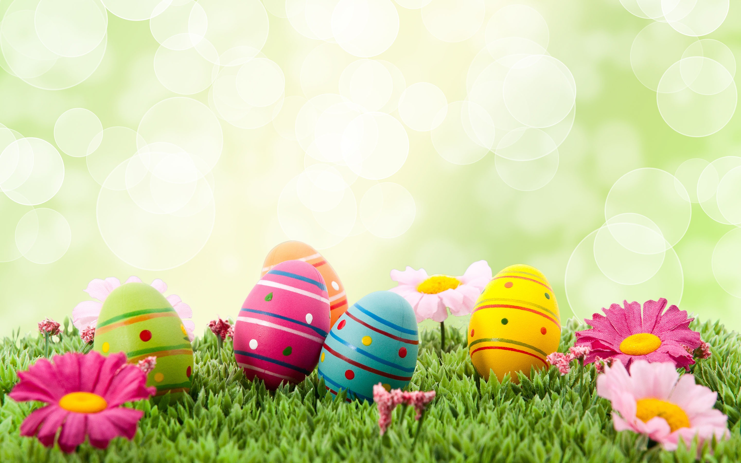 Easter eggs wallpaper