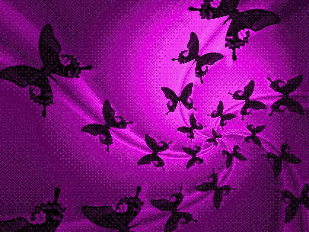 Butterfly Background Powerpoint Backgrounds For Free Powerpoint
