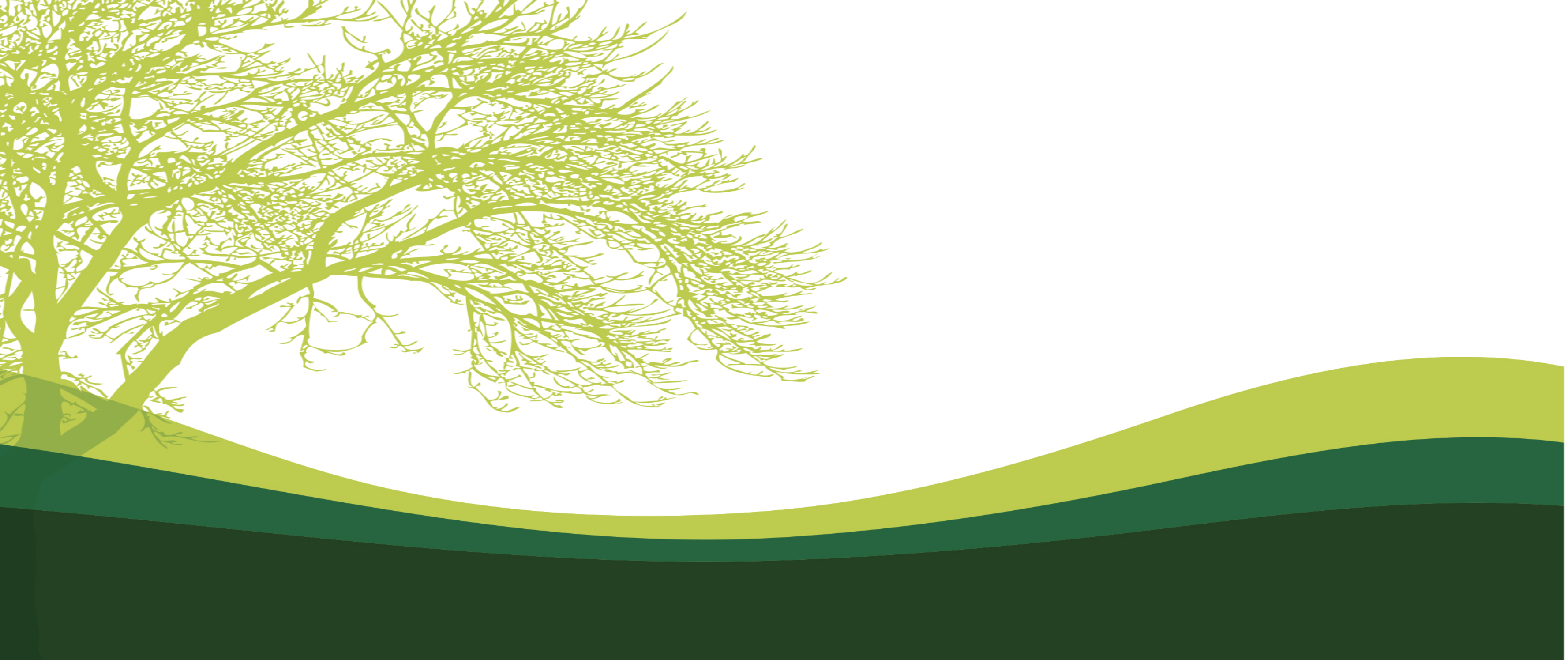 Tree Banner Background