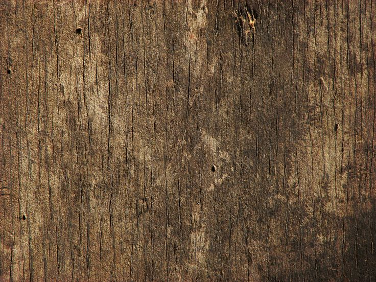 dark old wood background photo