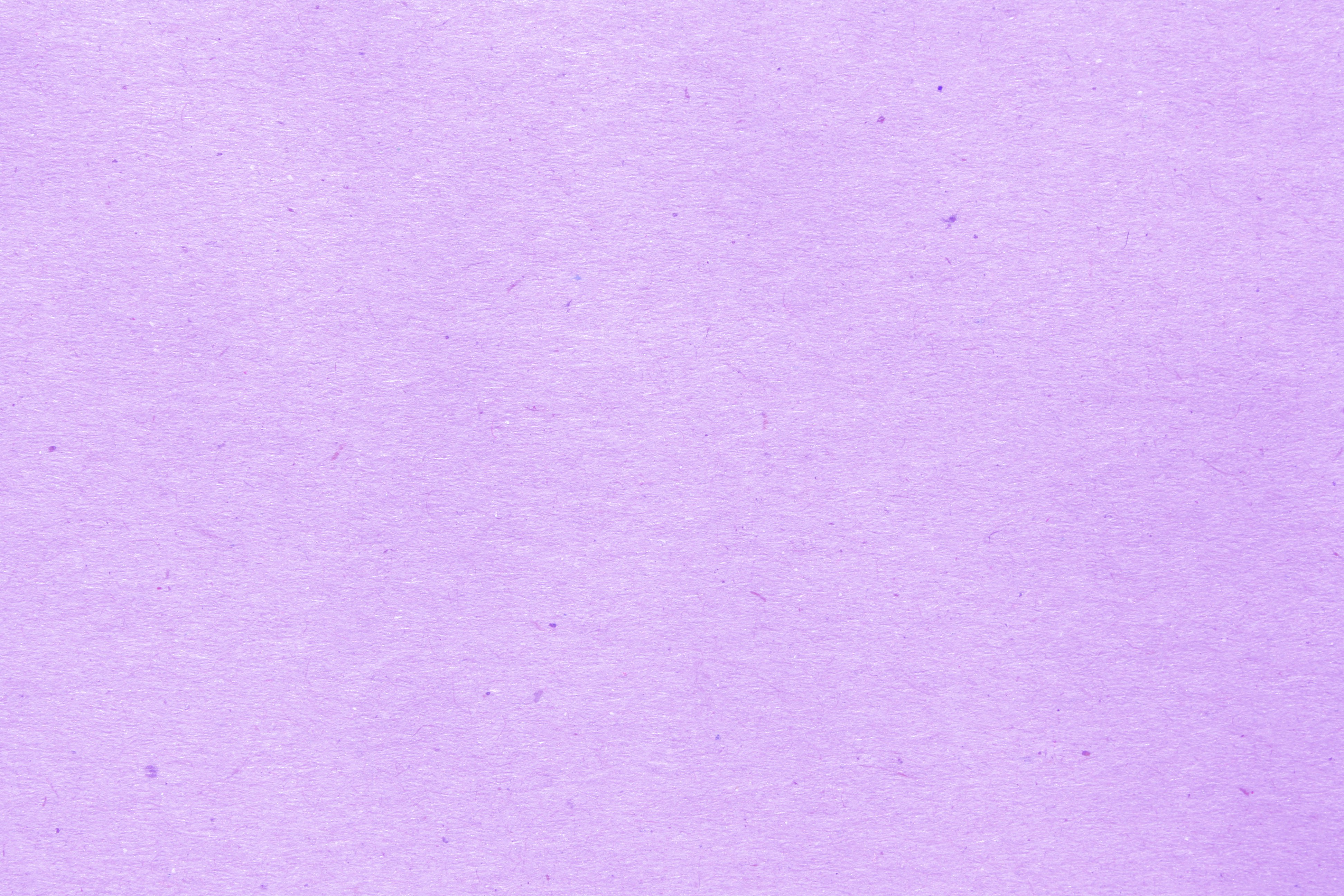 Light Purple Walpaper Picture