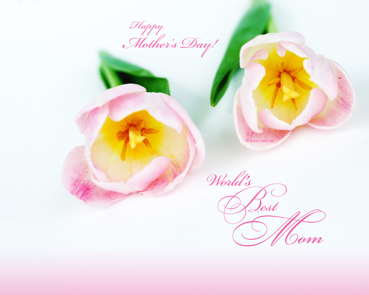 Mothers Day Download HD Photo