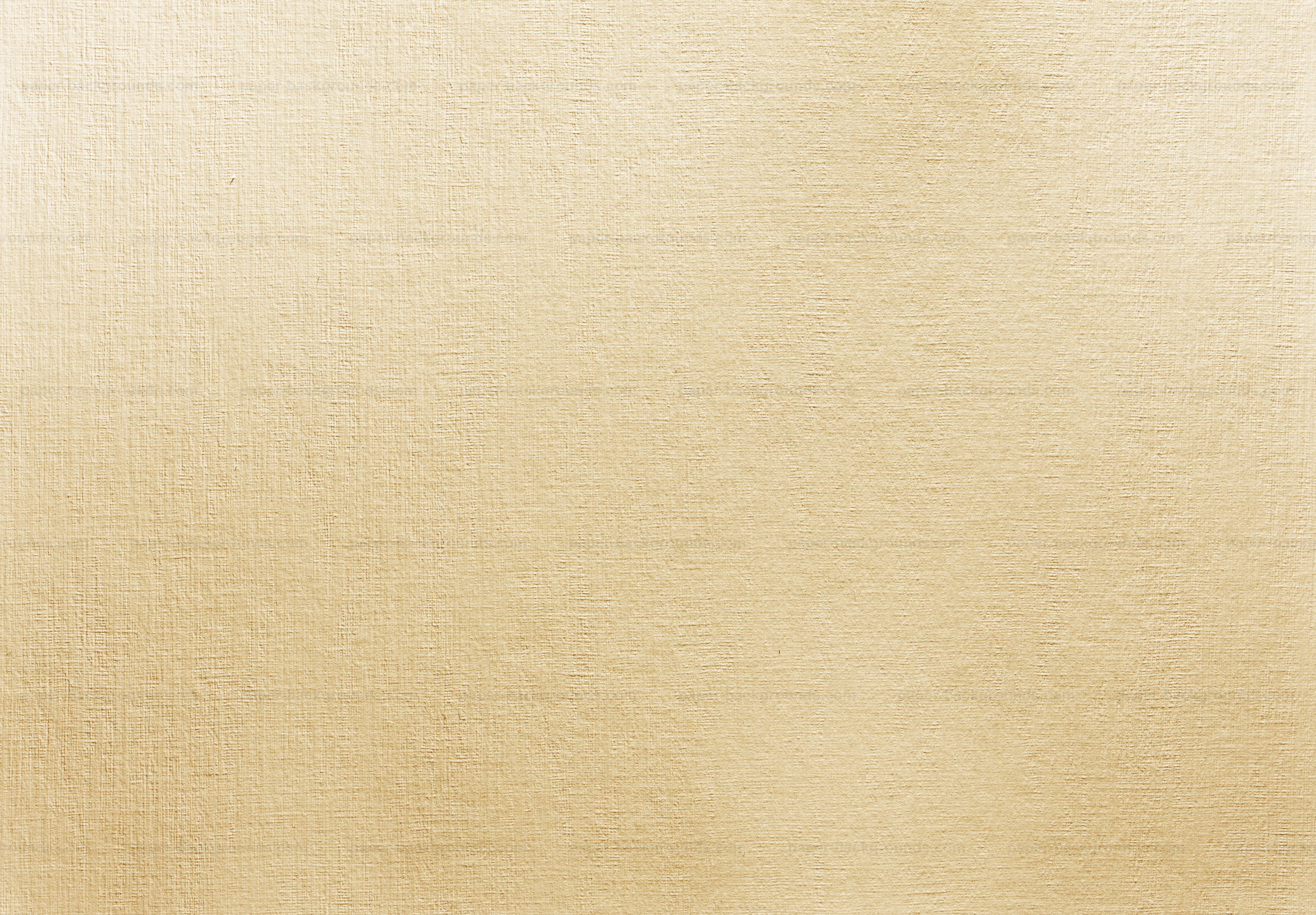 Paper Texture Long Tail Background Images