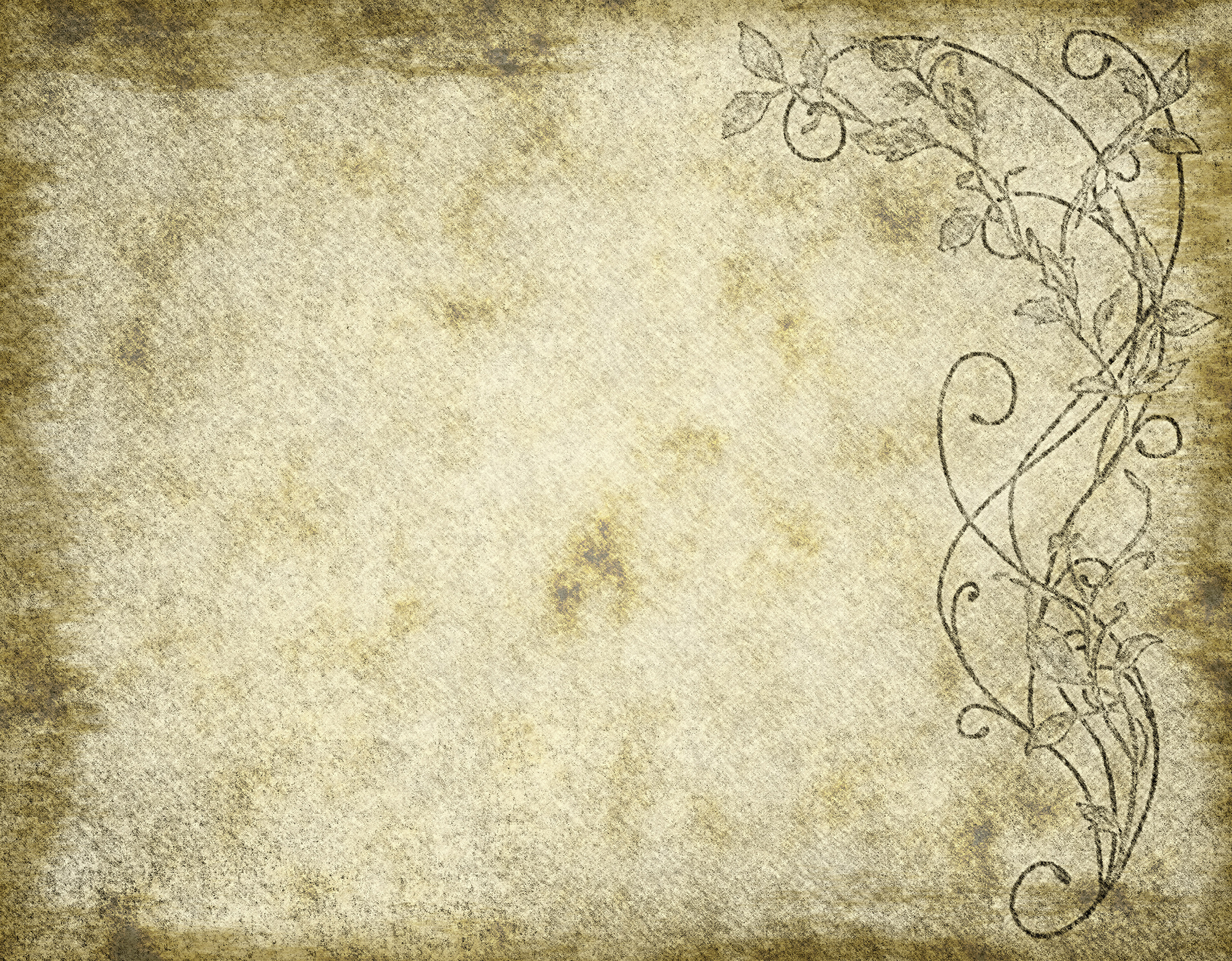 Parchment Textures Old Background
