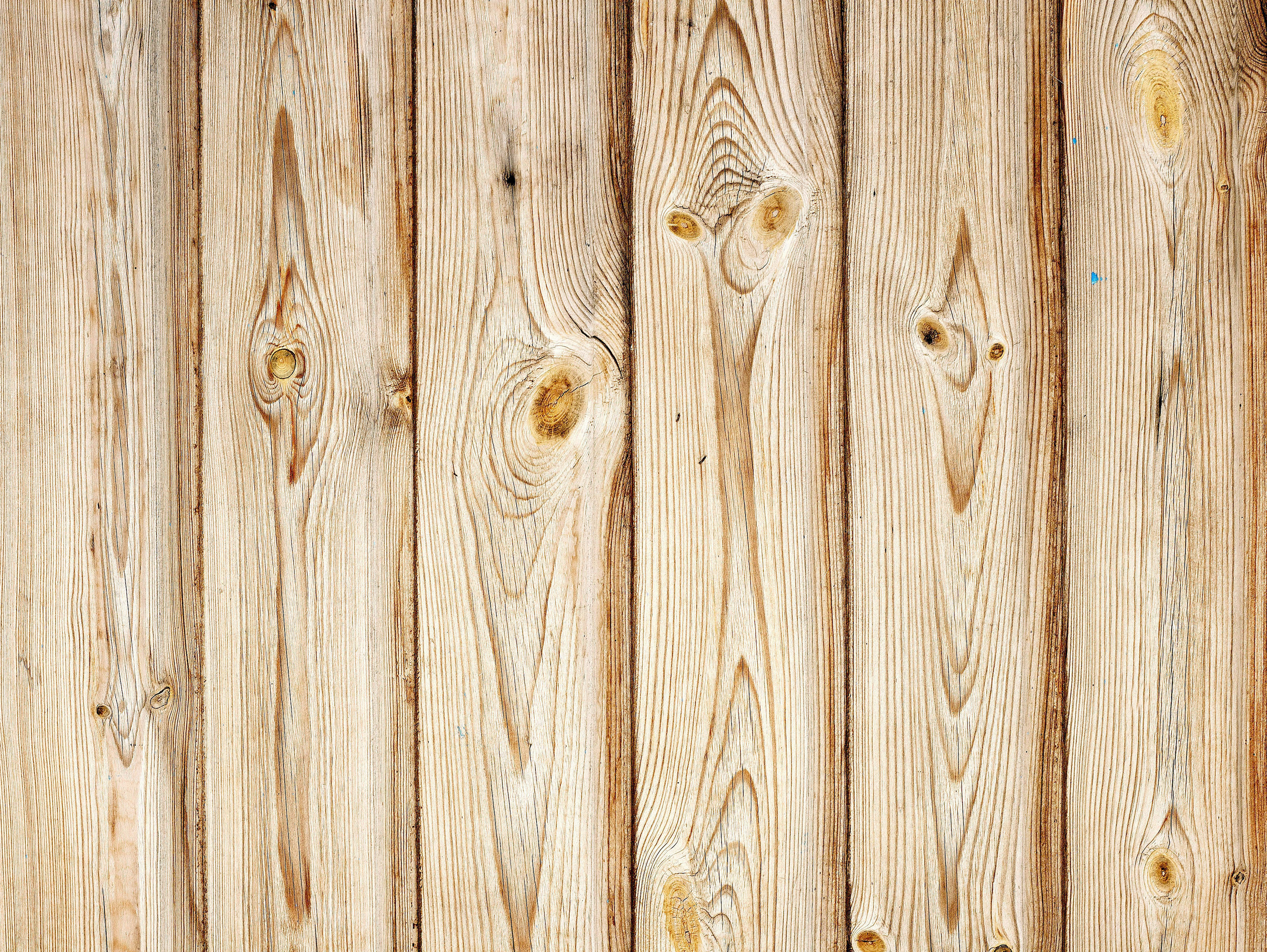 seamless wood texture #2946