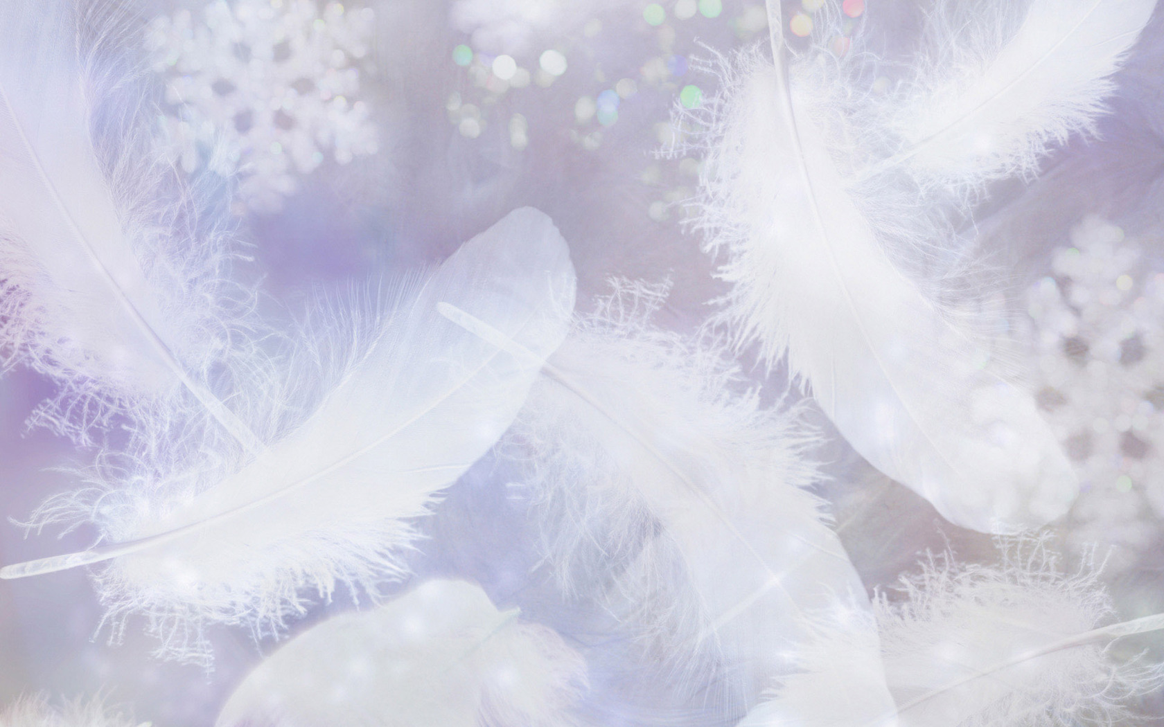 texture feather background